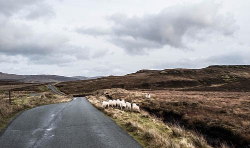 Road trip Ecosse#2#Ile de Skye